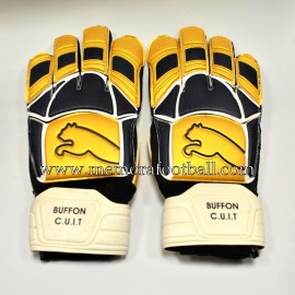 """Gianluigi BUFFON"" 2006 FIFA World Cup Final match un worn gloves"