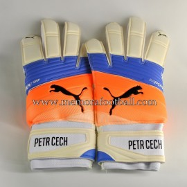 """PETR CECH"" 2016-17 Arsenal FC signed match unworn gloves"
