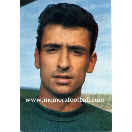 """JUNQUERA"" Real Madrid CF 1967 postcard"